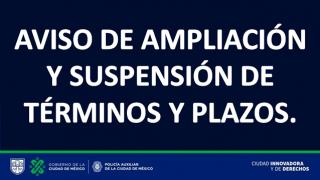 suspencion_terminos_2021.png
